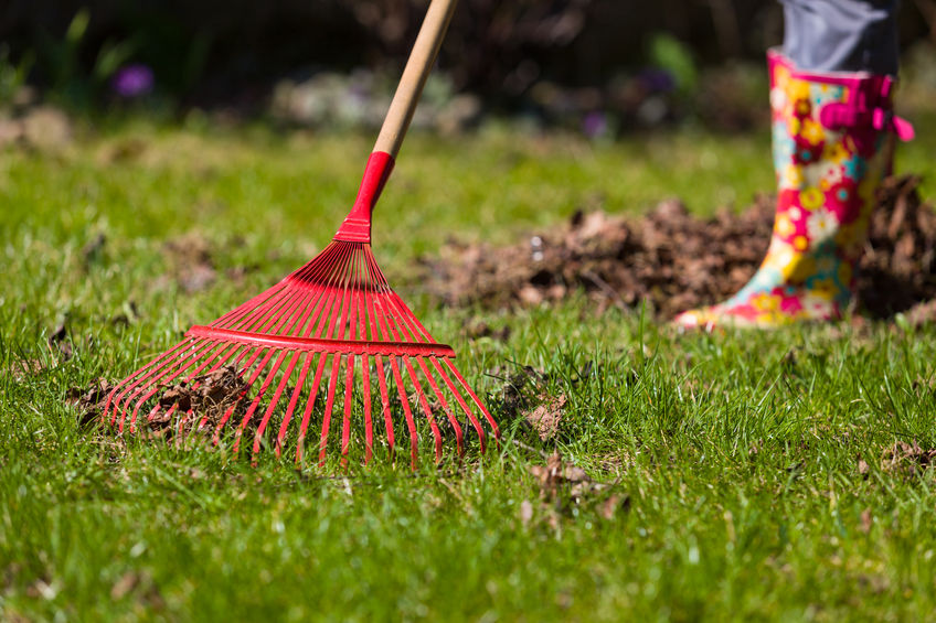 Grasshoppers Landscaping Spring Clean Up