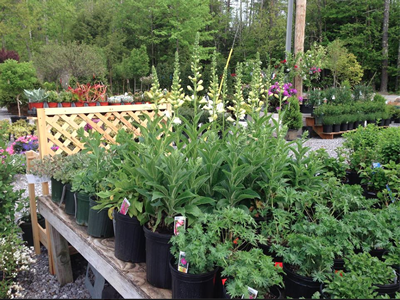 Garden Centers for Goffstown, NH